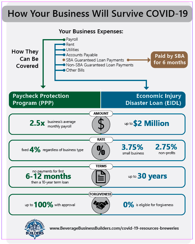 graphic: how your business will survive covid-19